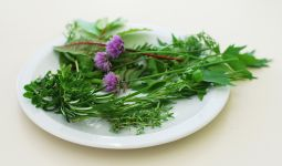 essential oils and herbs cooking